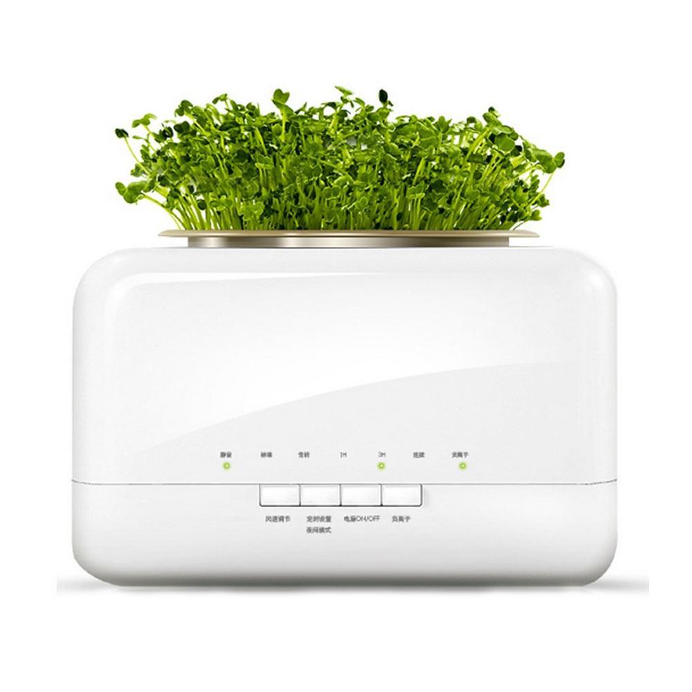 空氣淨化專家 高效冷觸媒負離子空氣清淨機 植栽綠化機 (除菌 去除異味)