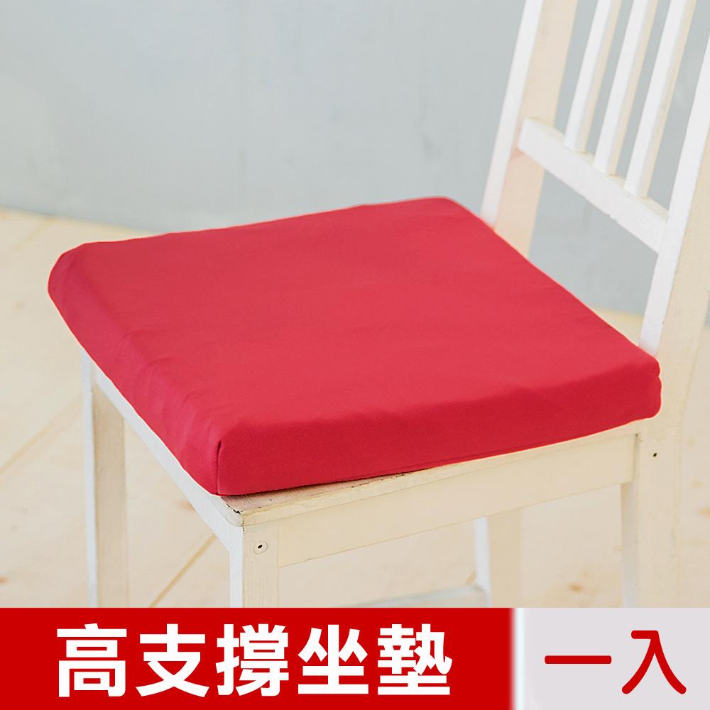 【凱蕾絲帝】台灣製造-久坐專用二合一高支撐記憶聚合紓壓坐墊-棗紅(一入)