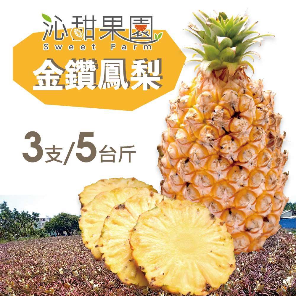 預購《沁甜果園SSN》金鑽鳳梨3顆裝(5台斤)