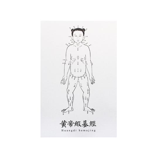 故宮精品 黃帝蝦?經明信片(三入)