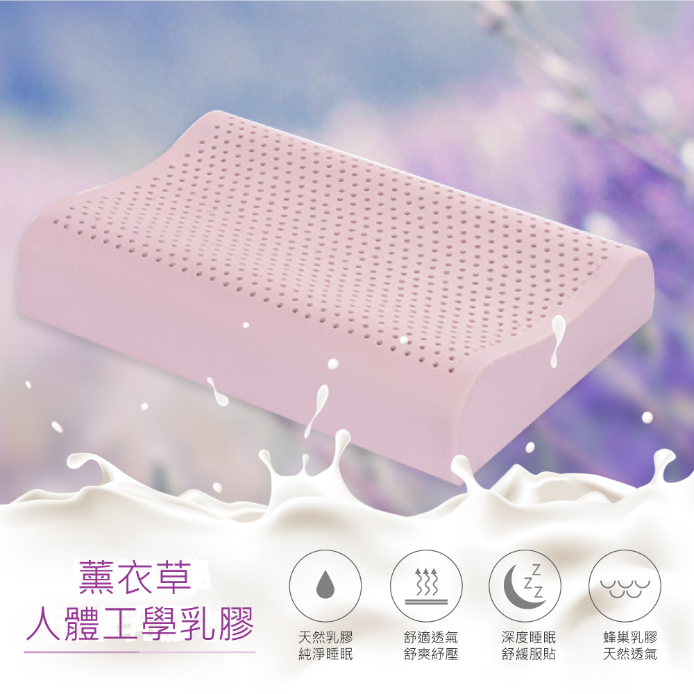 【R.Q.POLO】薰衣草人體工學乳膠枕 ( 釋壓放鬆/彈性舒適)