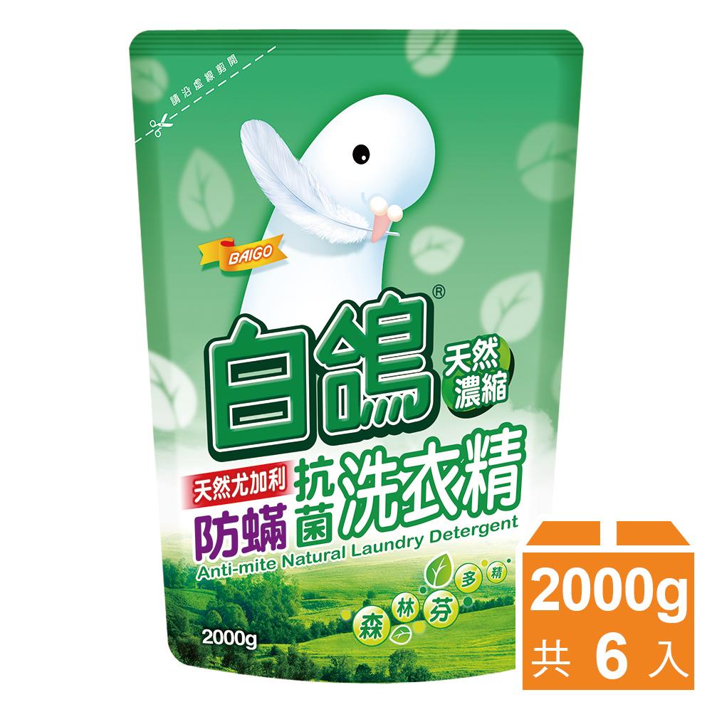 【白鸽】天然浓缩抗菌洗衣精 尤加利防蹒-补充包2000gx6包