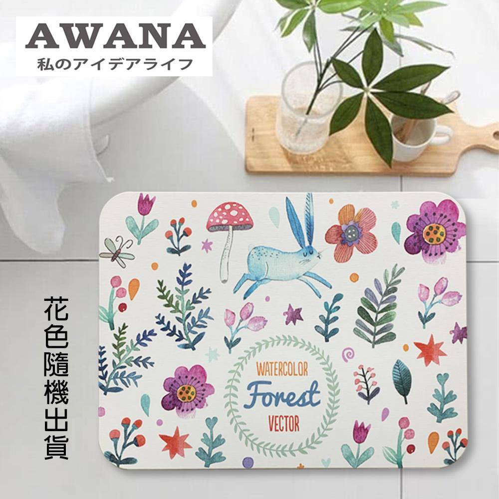 【AWANA】珪藻土地墊40x30cm-花色隨機出貨