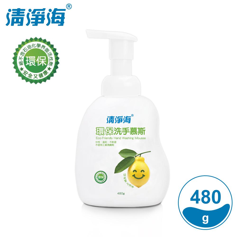 清淨海 環保洗手慕斯(檸檬飄香) 480g(超值12入組)