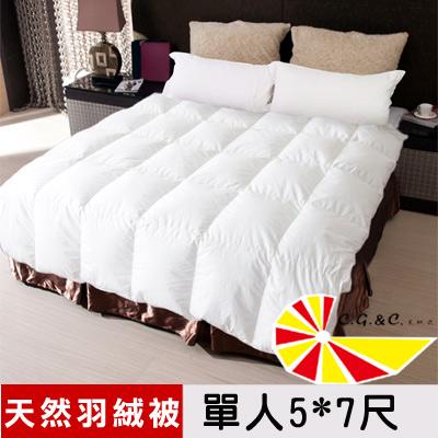 【凱蕾絲帝】台灣制造~專櫃級耐寒5℃100%純天然羽絨被(單人5*7尺)
