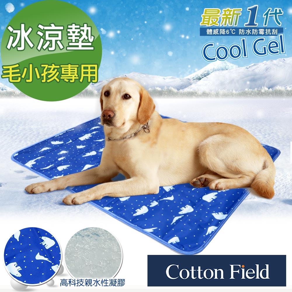 棉花田【北極雪】極致酷涼多功能寵物涼墊(61x76cm)