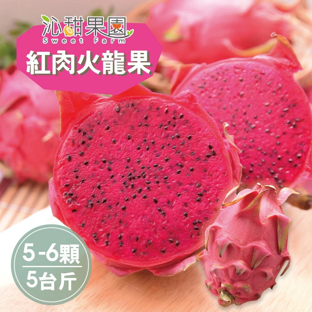 預購《沁甜果園SSN》屏東紅肉火龍果(5-6顆裝/5台斤)