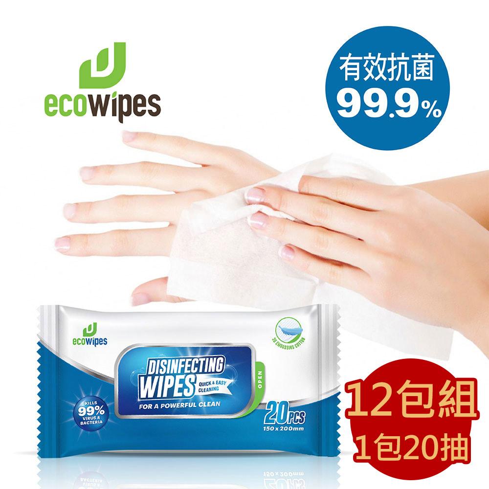 【有現貨】外銷美國的品牌 -Eco Wipes酒精擦抗菌濕紙巾隨身包 20抽/包 共12包
